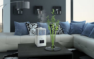 Выбор увлажнителя воздуха для дома