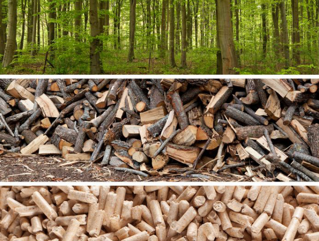 Ненужные деревянные щепки используют при изготовлении древесных гранул