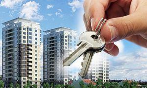 Как купить квартиру от застройщика?