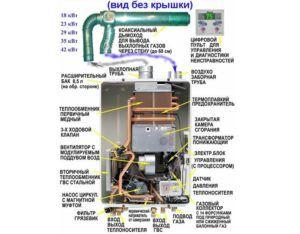 Внутреннее строение напольного газового котла Baxi